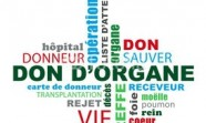 don_dorgane